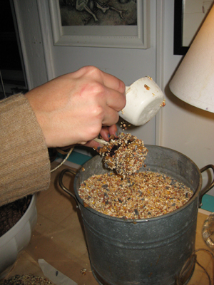 Step 4: Cover pine cone with brid seed.