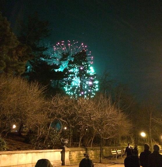 Fireworks Prospect Park/ Good House Guest
